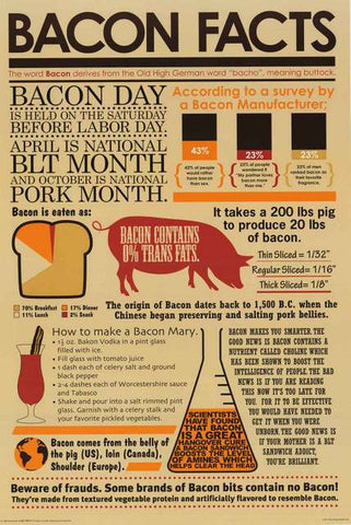 Bacon Facts Infographic Poster