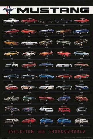 Ford Mustang 1964-2013 Poster