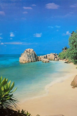Tropical Beach Paradise Cove Poster