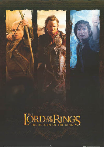 Lord of the Rings Heroes Poster