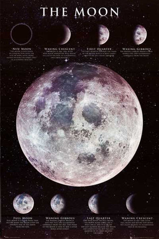 The Moon Phases of the Moon Lunar Phases 24x36 Poster