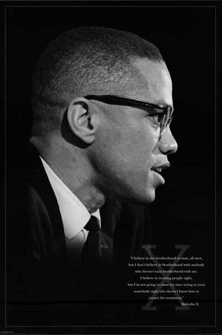 Malcolm X Quote Poster