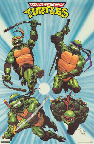 Teenage Mutant Ninja Turtles Poster 22x32