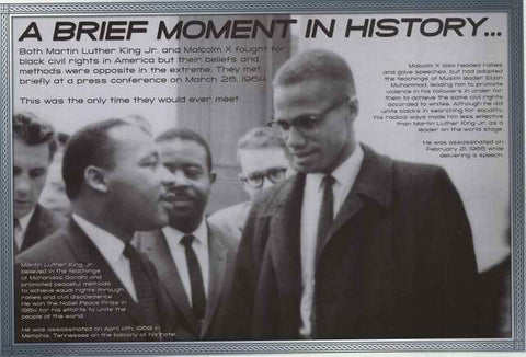 Martin Luther King Jr Malcolm X Poster