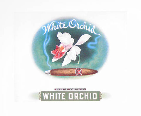 WHITE ORCHID CIGAR STORE ART 16x20 POSTER
