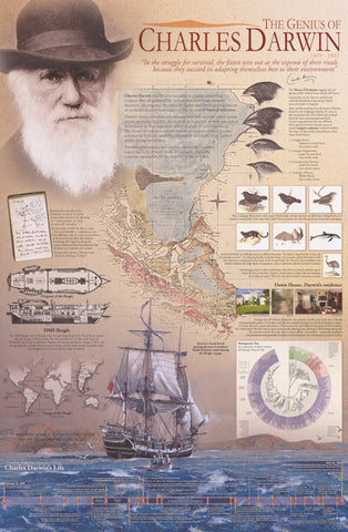 Charles Darwin Theory of Evolution Poster