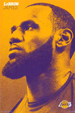 LeBron James LA Lakers Poster