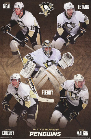 Pittsburgh Penguins NHL Hockey Poster