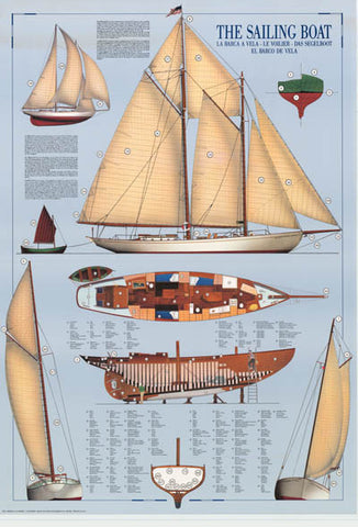 Sailboat Sailing Infographic Poster