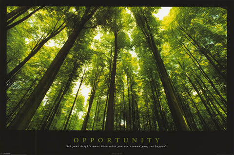 Opportunity Inspiration Quote Poster