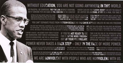 Malcolm X Quotes Poster 12x24 BananaRoad