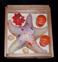 Starfish Gift Box, Chunky Glimmer, fragrance free - Fanny Bay Candle Company