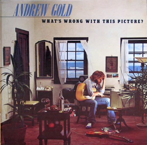 Andrew Gold ‎– What's Wrong With This Picture? - 1976-Soft Rock, Pop Rock (vinyl)