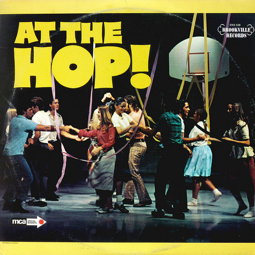 At The Hop - 3 Lp set - amazing artists ! - Chiffons, Tokens, Drifters, Coasters, Safaris ++ (vinyl)