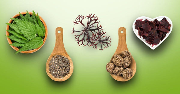 5 Herbs That Can Help Support Thyroid Health and Function