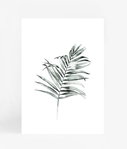 Leden | Palm Frond A3 Print | Shut the Front Door