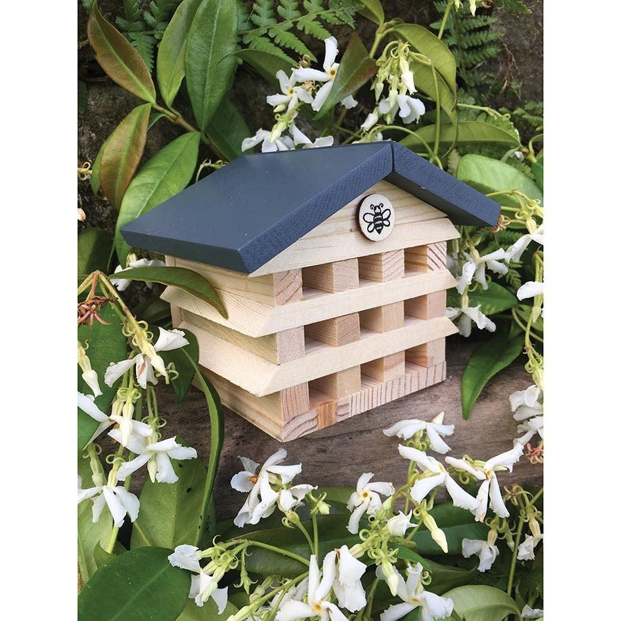 Apples to Pears | Build a Bee Hotel in a Tin | Shut the Front Door