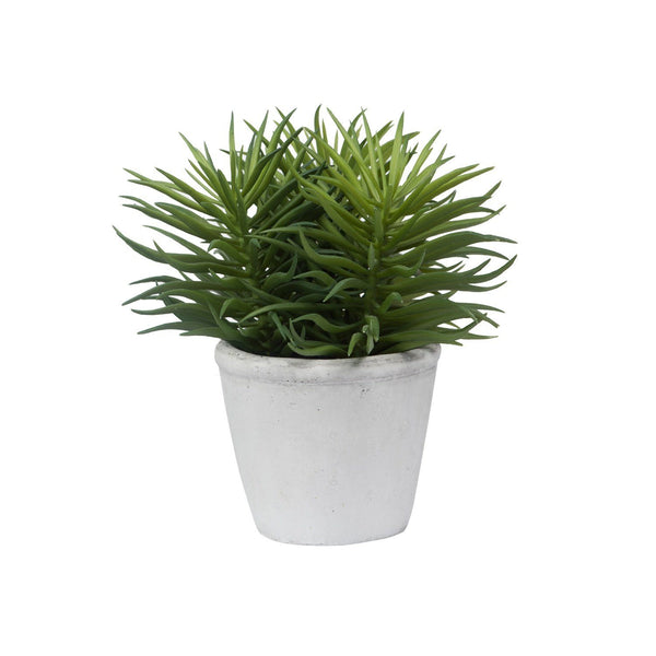 General Eclectic | Pine Needle Succulent Faux Plant | Shut the Front Door