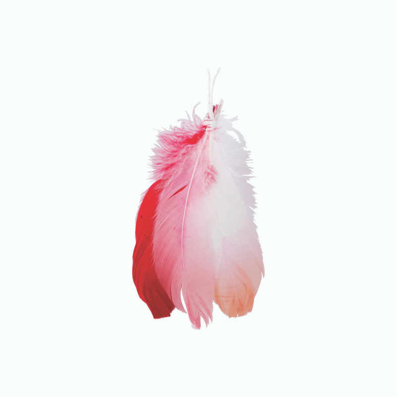 Down to the Woods | Blush Feather Cluster Decoration | Shut the Front Door