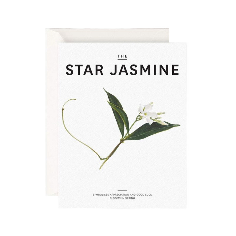 Father Rabbit | The Star Jasmine Card | Shut the Front Door