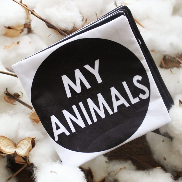 My Family Book | My Animals Soft Book | Shut the Front Door