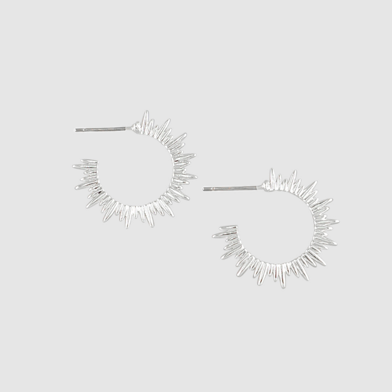 Tiger Tree | Earrings Solar Hoops - Silver | Shut the Front Door