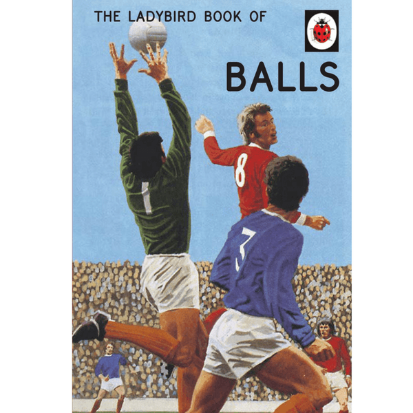 Ladybird | Ladybird Book of Balls | Shut the Front Door