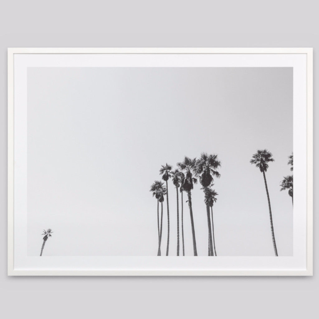 Middle of Nowhere | Framed Print Palm Sky Grey | Shut the Front Door