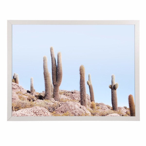 General Eclectic | Framed Print Large Desert Cactus | Shut the Front Door
