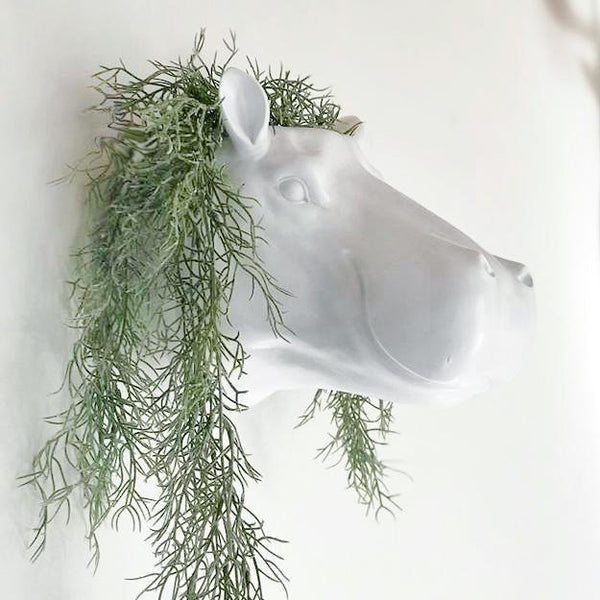 White Moose | Harry Hippo Head Planter White | Shut the Front Door