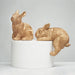 White Moose | Money Box Bunny - Gold | Shut the Front Door