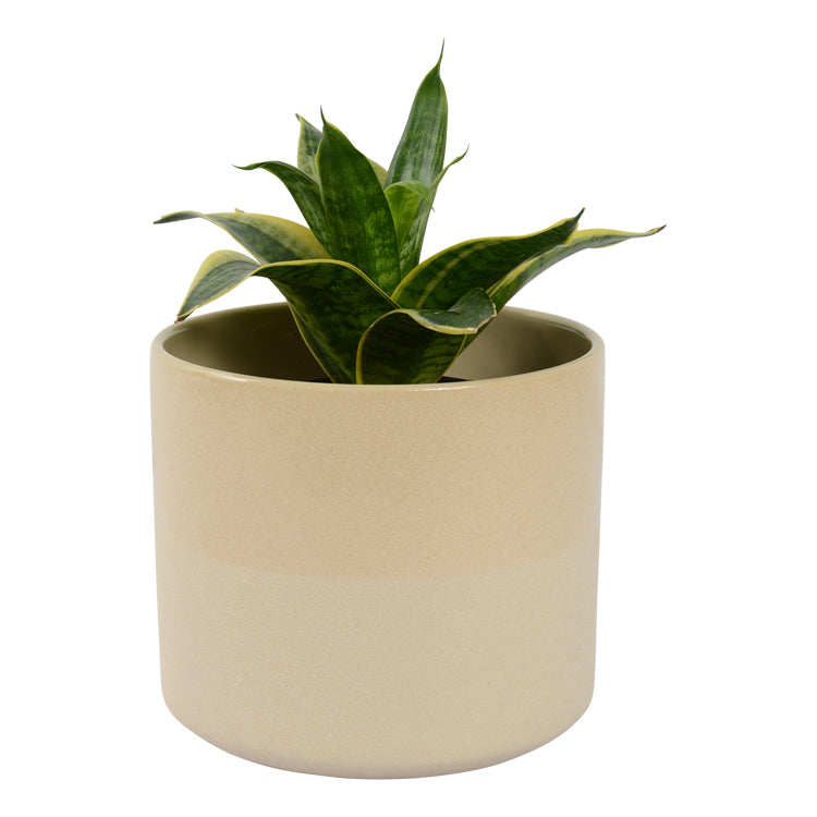 Habitat | Small Capri Planter Pot - Sand | Shut the Front Door