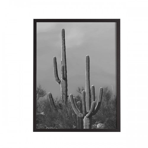 General Eclectic | Framed Print Small Cactus B&W | Shut the Front Door