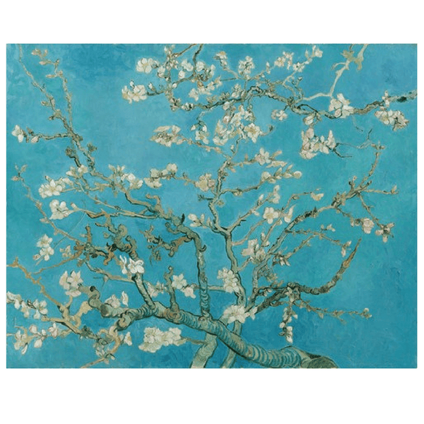Ixxi | IXXI Artwork Almond Blossom 100x80cm *PREORDER* | Shut the Front Door