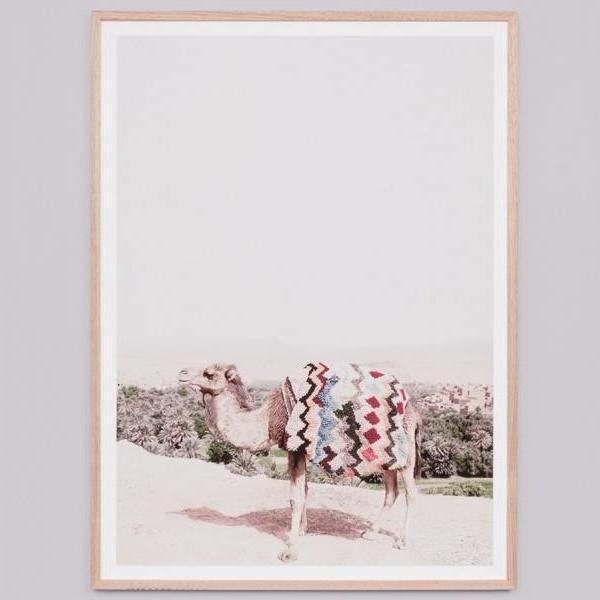 Middle of Nowhere | Framed Print Desert Camel | Shut the Front Door