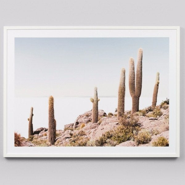 Middle of Nowhere | Framed Print Cactus View | Shut the Front Door