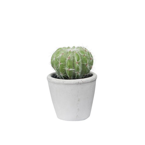 General Eclectic | Mini Barrel Cactus Faux Plant | Shut the Front Door