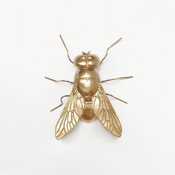 White Moose | Buzz the Fly - Gold | Shut the Front Door