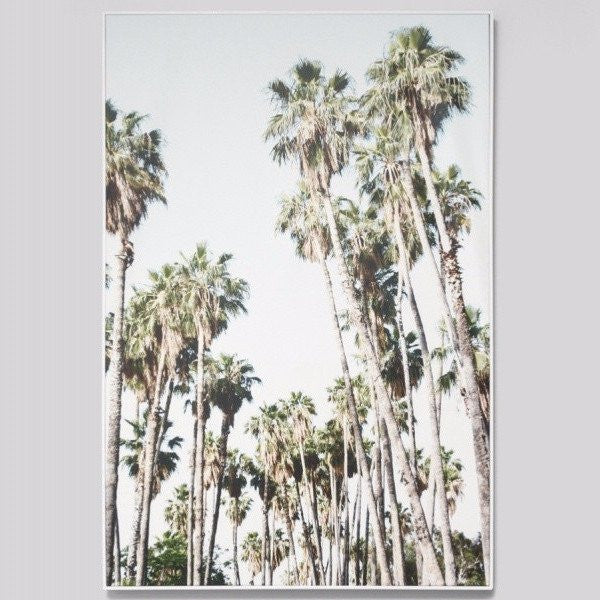 Middle of Nowhere | Framed Canvas Tall Palms | Shut the Front Door