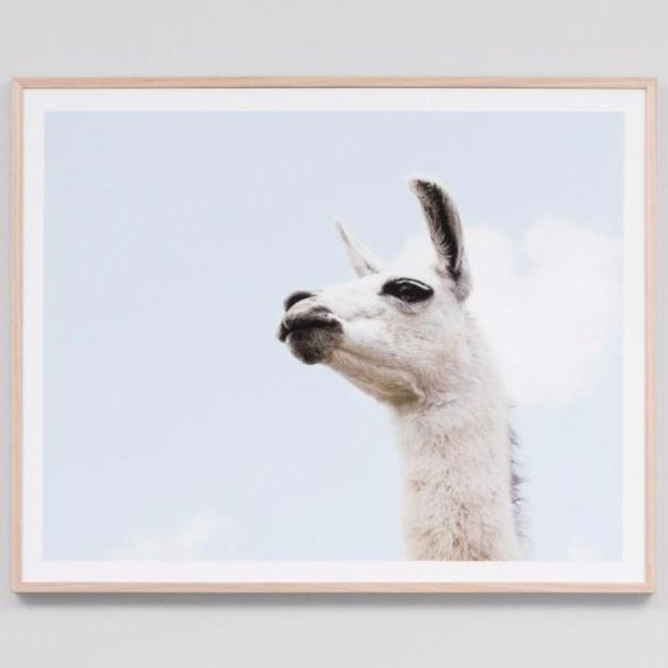 Middle of Nowhere | Framed Print Llama Sky | Shut the Front Door