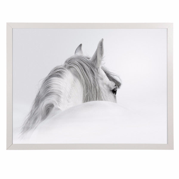 General Eclectic | Framed Print Large Misty Horse | Shut the Front Door