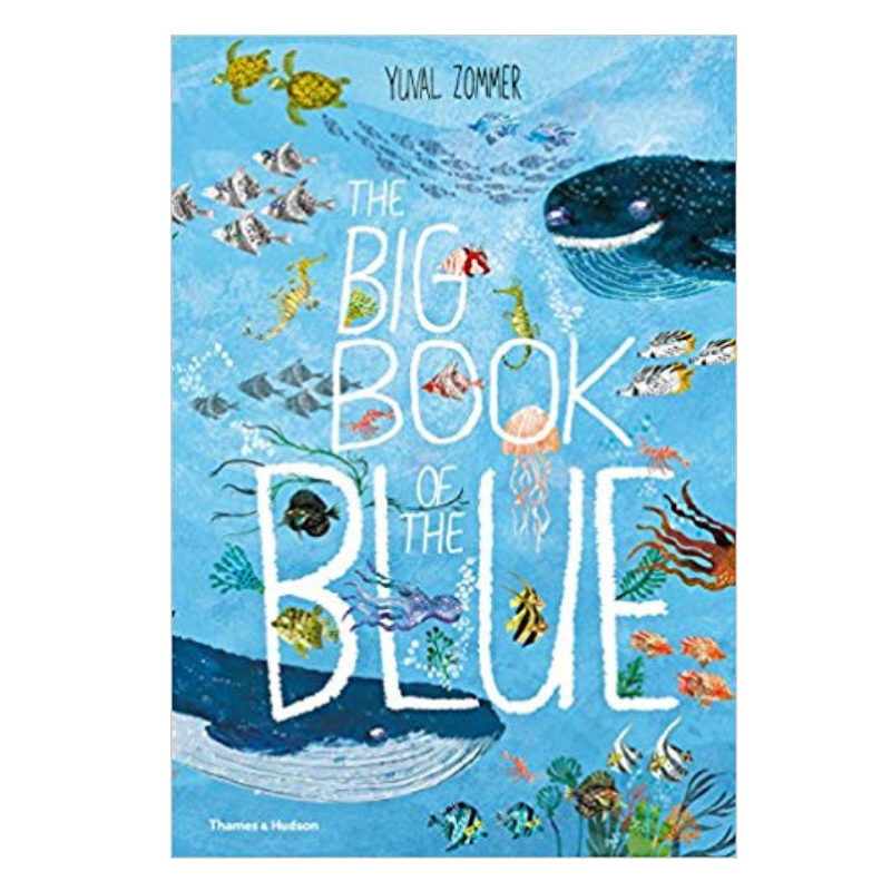 Thames Hudson | Big Book of The Blue | Shut the Front Door