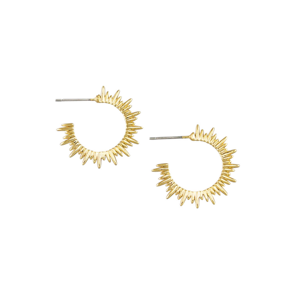 Tiger Tree | Earrings Solar Hoops - Gold | Shut the Front Door