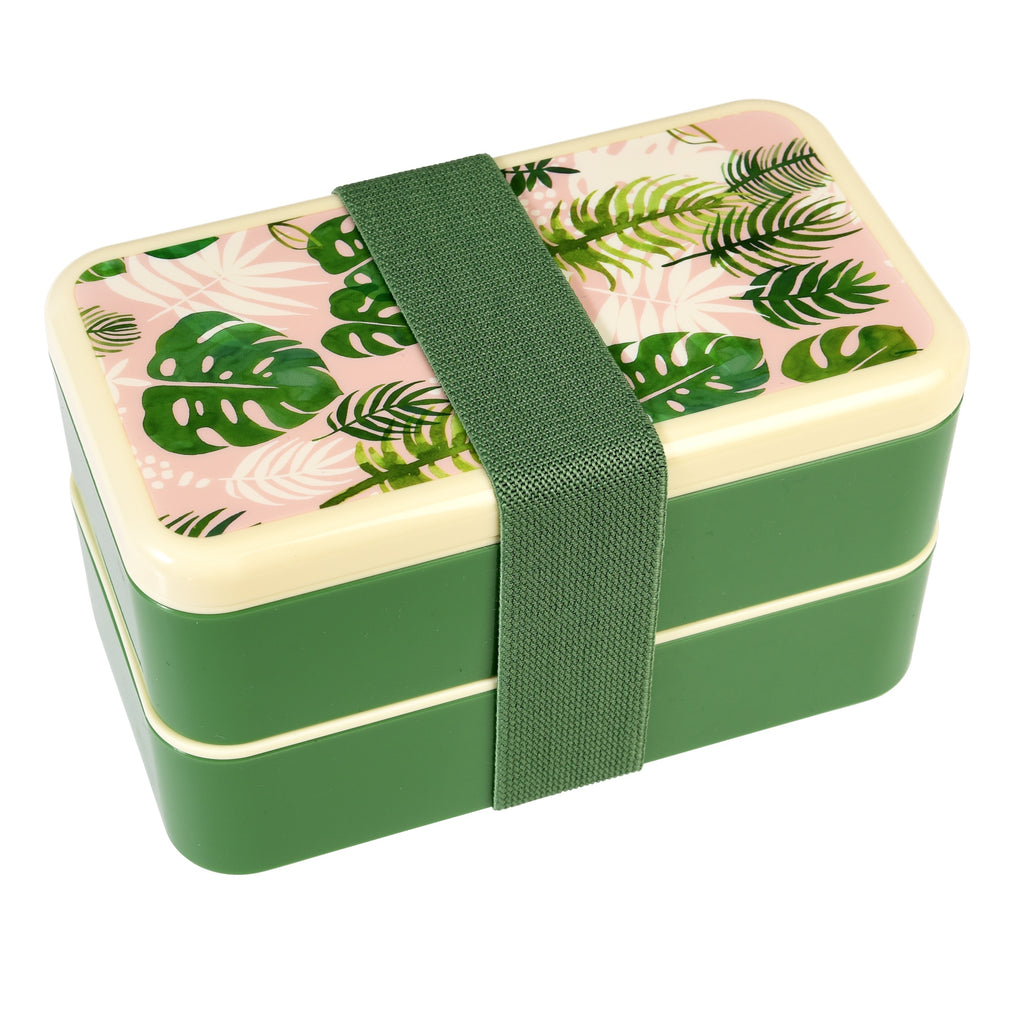 Rex International | Bento Box - Tropical Palm | Shut the Front Door