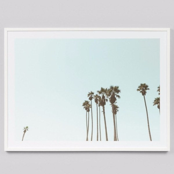 Middle of Nowhere | Framed Print Palm Sky | Shut the Front Door