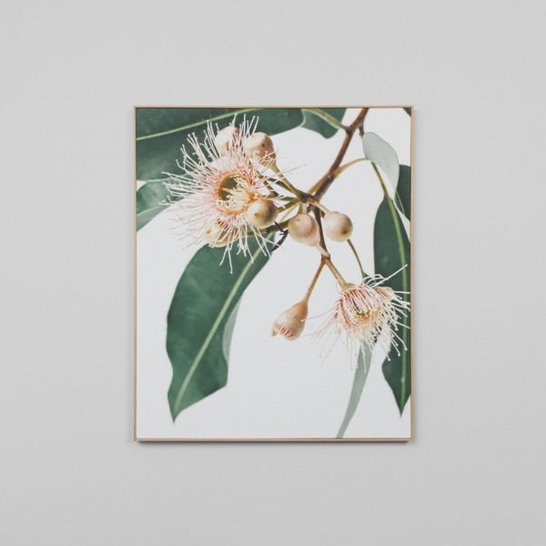 Middle of Nowhere | Framed Canvas Eucalyptus Flower | Shut the Front Door