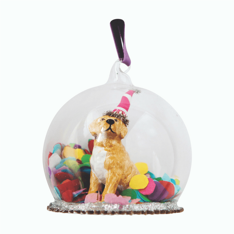 Down to the Woods | Confetti Puppy Dome | Shut the Front Door