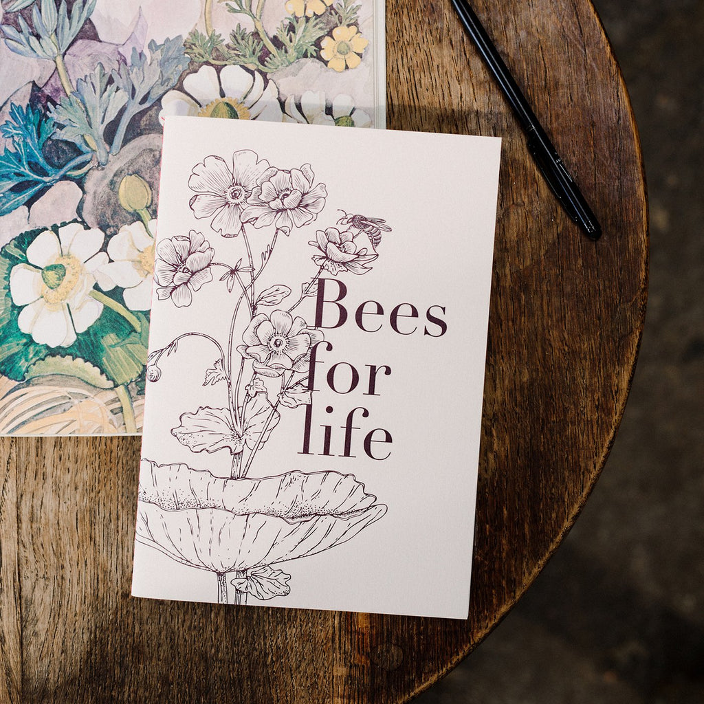 Miel des Collines | Bees for Life Notebook | Shut the Front Door