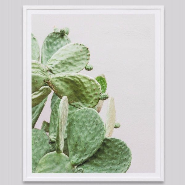 Middle of Nowhere | Framed Print Prickly Pear | Shut the Front Door