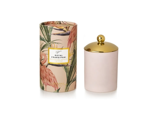 Eco Candle- Royal Frangipani